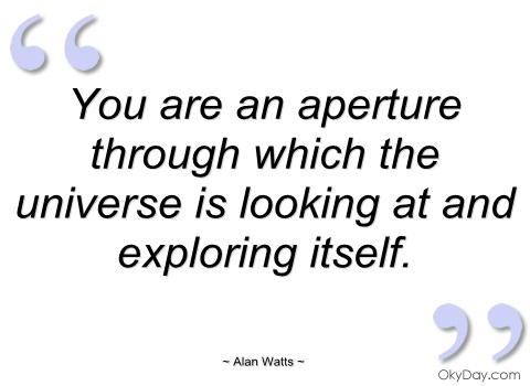 you-are-an-aperture-through-which-the-alan-watts