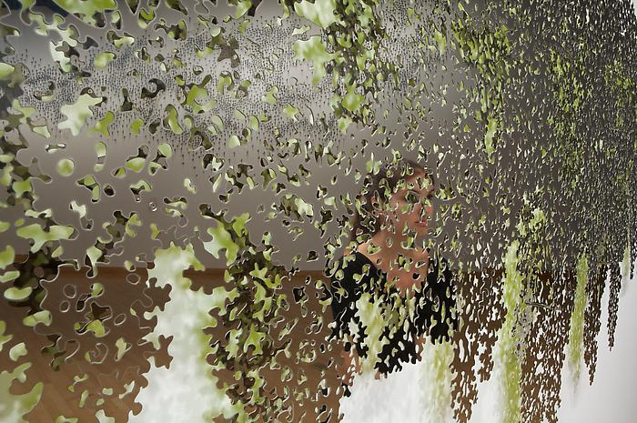 TF_Portrait_Blind_Landscape_USF_Inst_det01_hr0.jpg